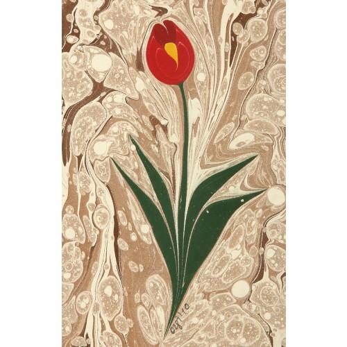 Tulip Marbling