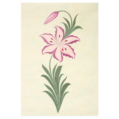 Lilium Marbling Art on Paper