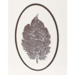 Leaf Marbling - 3