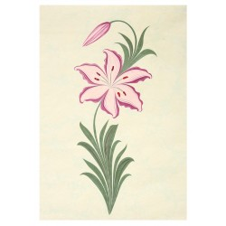 Lilium Marbling Art on Paper