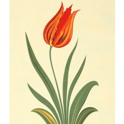 Heaven Tulip Marbling Art on Paper