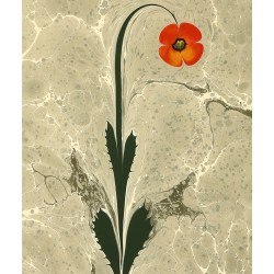 Poppy Marbling Art on Paper